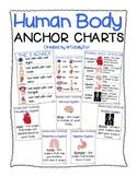 Human Body Parts Anchor Charts