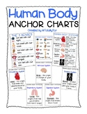 Human Body Parts Anchor Charts