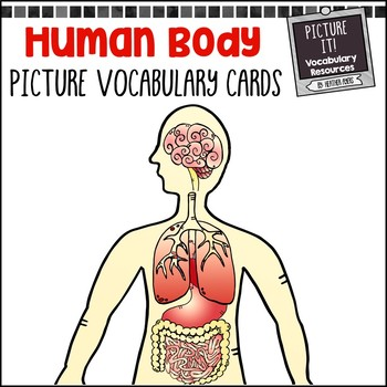 Human Body Picture Vocabulary Cards