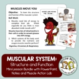 Muscular System - Distance Learning