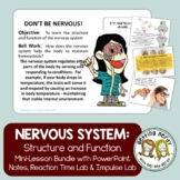 Human Body - Nervous System - PowerPoint and Handouts