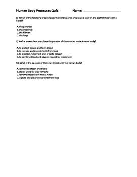 Human Body Processes Quiz