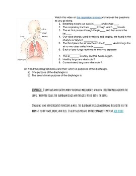 Human Body- Respiratory System Video and Questions