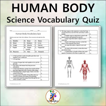 Human Body Science Grades 4-6 Vocabulary Quiz and Word List