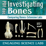 Human Body: Skeletal System Activity Identifying Labeling and Comparing Bones