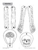 Human Body: Skeleton
