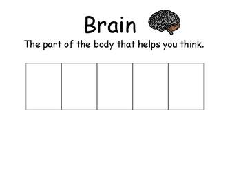 Human Body Spelling Activity