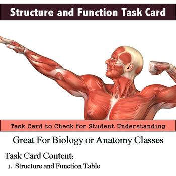Human Body - Structure and Function Task Card