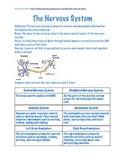 Human Body Student Notebook-Teacher/Answer Key Complete Unit