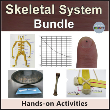 Human Body System Bundle