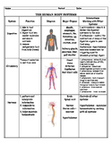 Human Body System Chart