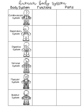 Human Body System Interactive Notebook and Guided Notes