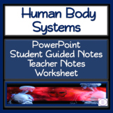 Human Body System: PowerPoint, Student Guided Notes, Teach