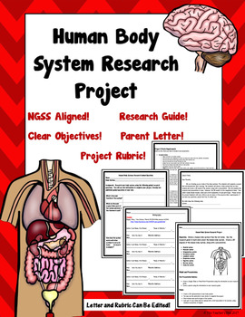 Human Body System Research Project