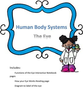 Human Body System- The Eye