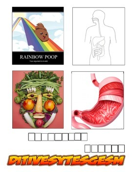 Human Body Systems 4 pics one word vocab. game
