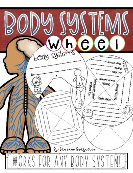 Human Body Systems Activity Wheel Project Craft