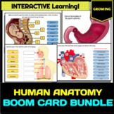 Human Body Systems (Anatomy) BOOM Card Bundle - GROWING!