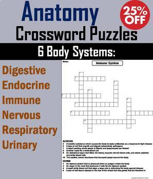 Human Body Systems: Anatomy Crossword Puzzles Bundle