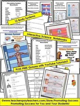 Human Body Systems Interactive Notebook BUNDLE Science Stations 5th Grade