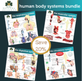 Human Body Systems Clip Art Bundle