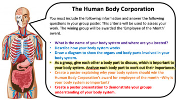 Human Body Systems Co-operative Learning
