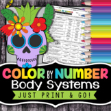 Human Body Systems Color by Number - Science Color By Number