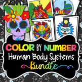 Human Body Systems Color by Number - Science Color By Number Bundle