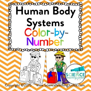 Human Body Systems Color-by-Number