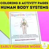 Human Body Systems Coloring Pages and Worksheets | Early Finisher Work