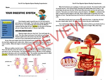 Human Body Systems Comprehensive Unit