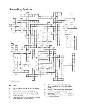 Human Body Systems Crossword