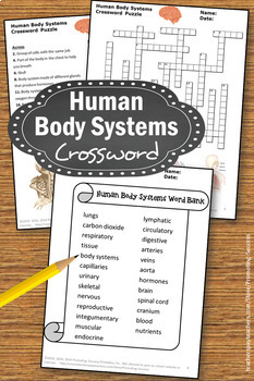 Human Body Systems Science Crossword Puzzle 5th Grade