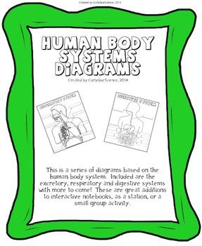Human Body Systems Diagrams BUNDLE