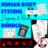 Human Body Systems Diagrams and Review Bundle