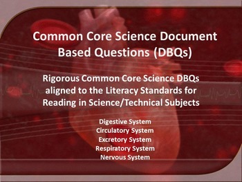 Human Body Systems Document Based Questions (DBQs) - 5 Dif
