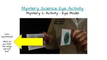 Human Body Systems - Five Senses