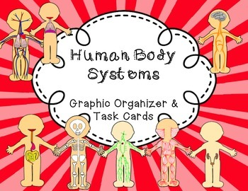 Human Body Systems: Graphic Organizer and Task Cards