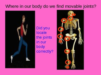 Human Body Systems: Joints PPT