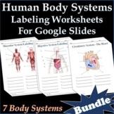 Human Body Systems Labeling Worksheets for Google Slides