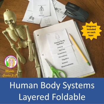 Human Body Systems Layered Foldable