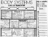 Human Body Systems | Levels of Organization | SKETCH NOTES | Science Coloring