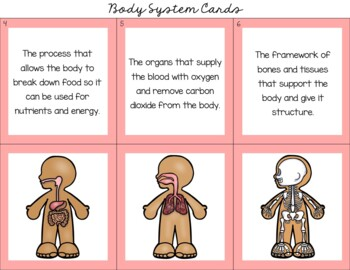 Human Body Systems - Montessori 3 Part Matching Cards