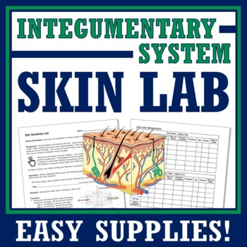 Human Body Systems Nervous & Integumentary Activity Middle School MS-LS1-3