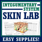 Human Body Systems Nervous & Integumentary Activity NGSS MS-LS1-3 MS-LS1-8