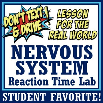 Human Body Systems - Nervous System Reaction Time Lab MS-LS1-3 MS-LS1-8
