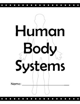 Human Body Systems Notes