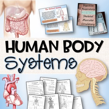 Human Body Systems Pack - Printables, Interactive Notebook