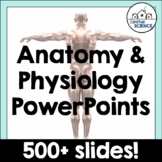 EDITABLE Anatomy & Human Body Systems Powerpoints