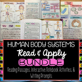 Human Body Systems Interactive Notebook Read and Apply BUNDLE